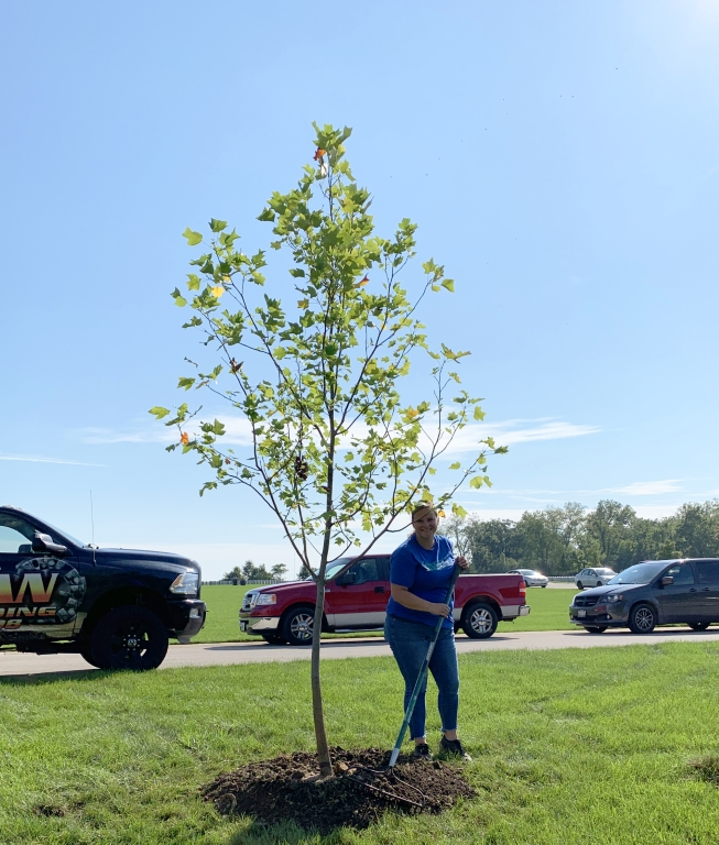 Marlee Planting a Tulip Tree for the Saluting Branches Event