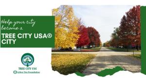 Help Your City Become a Tree City USA® City