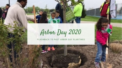 Arbor Day 2020: Flashback to Past Arbor Day Plantings