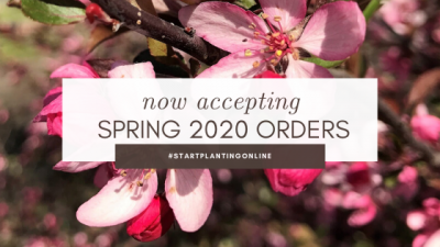 Now Accepting Spring 2020 Orders