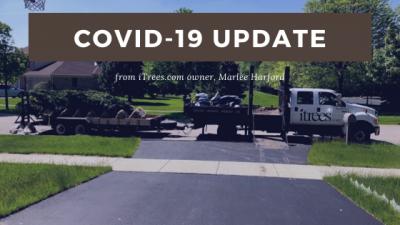 iTrees.com COVID-19 Update