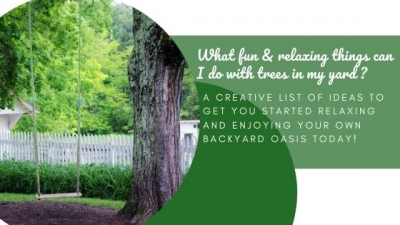 What Fun & Relaxing Things Can I Do With Trees in My Yard