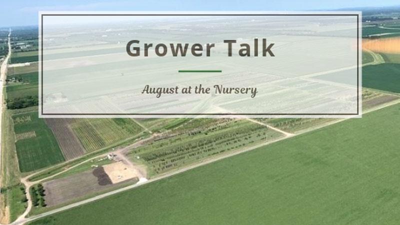 Grower Talk: August at the Nursery
