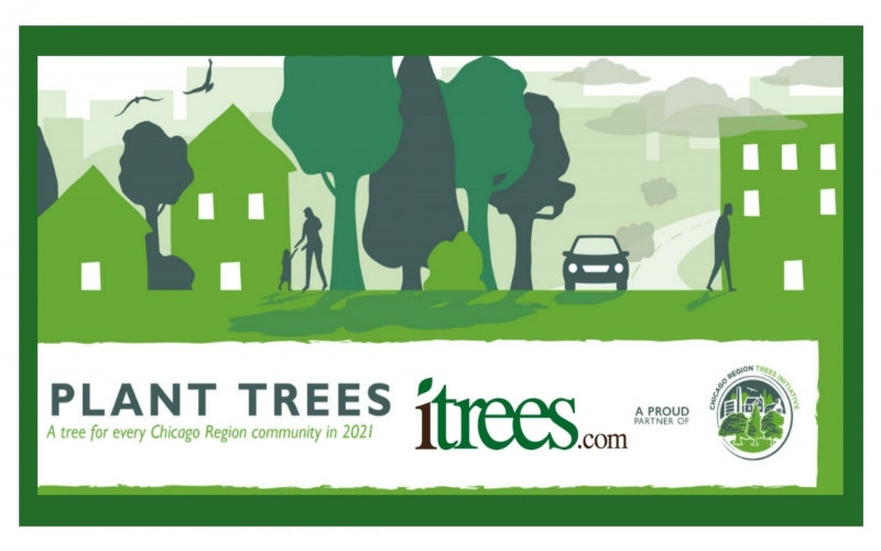 Chicago Region Trees Initiative: A Tree for Every Community in 2021