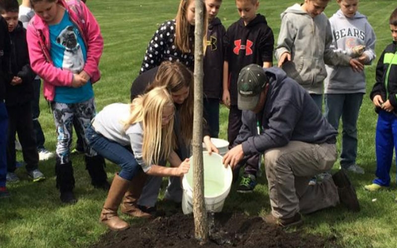 Annual Arbor Day Projects