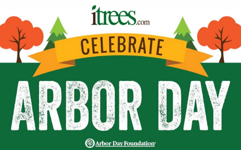 What are you doing on Arbor Day?