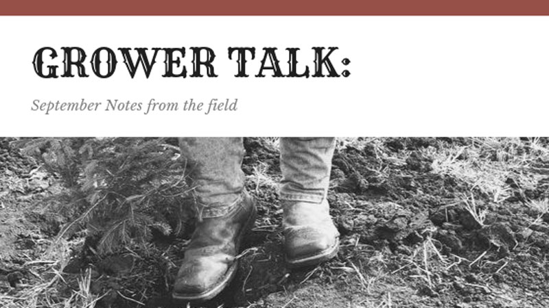 Grower Talk: September Notes from the Field