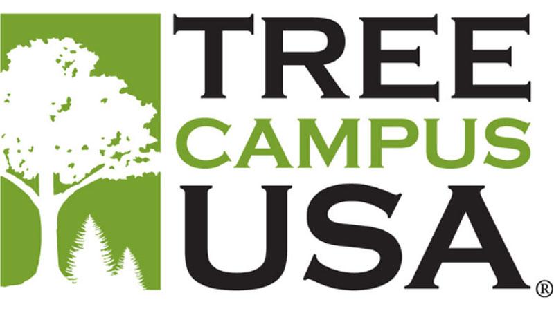 Tree Campus USA and Tree City USA