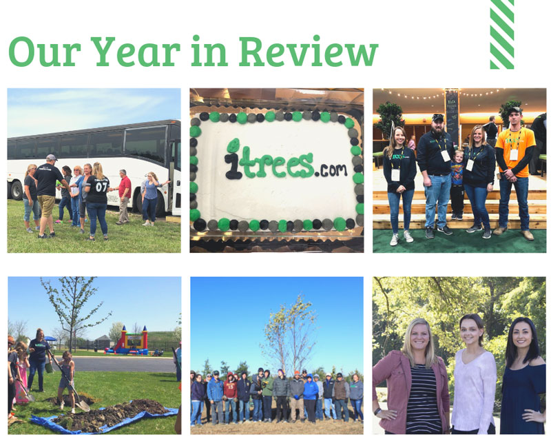 iTrees.com's Year in Review
