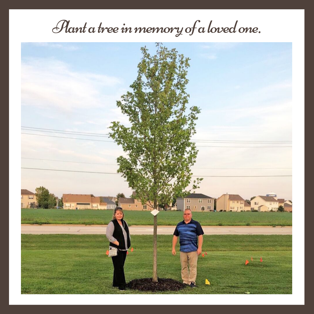 Tree Planting for a loved one