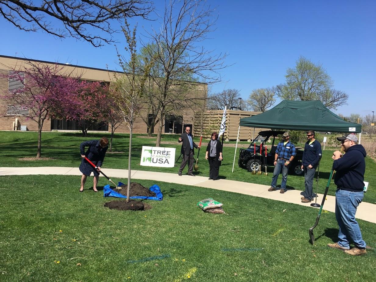 Tree Campus USA