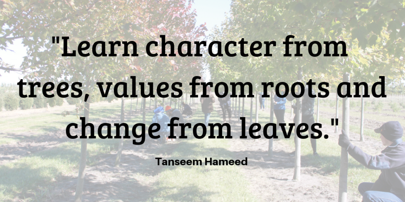 Hameed Tanseem