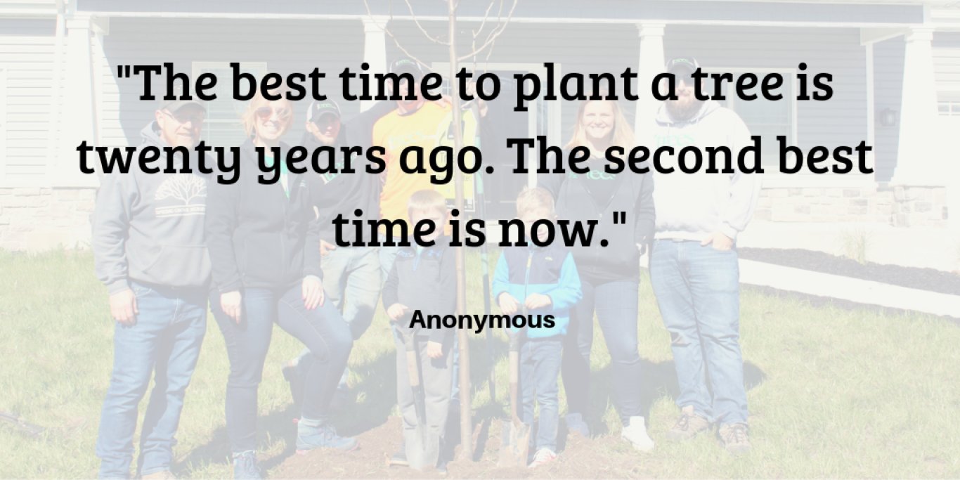 Best Time to Plant