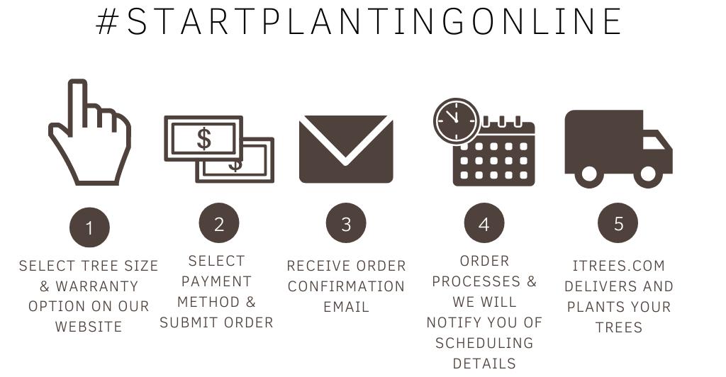 Start Planting Online Flow Chart