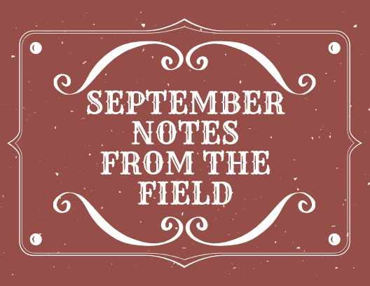 September Notes from the Field