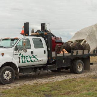 iTrees.com Truck