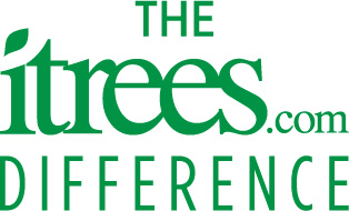 The iTrees.com Difference Logo